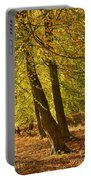 Autumn Beeches Portable Battery Charger