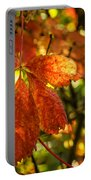 Autumn Begins 2 Portable Battery Charger