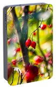 Autumn Berries  Portable Battery Charger