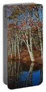 Autumn Blue Portable Battery Charger