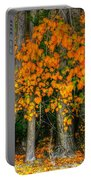 Autumn Breakout No.2 Portable Battery Charger