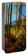 Autumn Brilliance 2 Portable Battery Charger