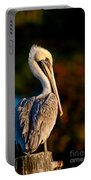 Autumn Brown Pelican Portable Battery Charger