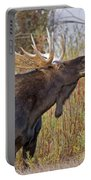 Autumn Bull Moose II Portable Battery Charger