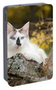 Autumn Cat Portable Battery Charger