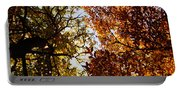 Autumn Chestnut Canopy   Portable Battery Charger