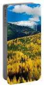 Autumn Color Larch Trees In Pine Tree Portable Battery Charger