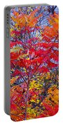 Autumn Colors - 113 Portable Battery Charger