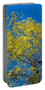 Autumn Colors Against The Sky Portable Battery Charger