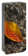 Autumn Colors And Playful Sunlight Patterns - Cherry Leaf Portable Battery Charger