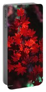Autumn Colors Early Portable Battery Charger