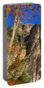 Autumn Colors In The Saxon Switzerland Portable Battery Charger