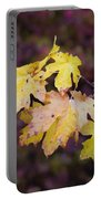 Autumn Contrast Portable Battery Charger
