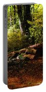 Autumn Dawn - East Haddam Portable Battery Charger