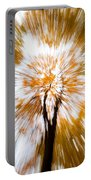 Autumn Explosion Portable Battery Charger by Dave Bowman