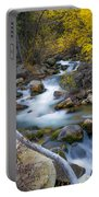 Autumn Fall Bend Portable Battery Charger
