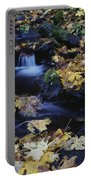 Autumn Fall Colors Starvation Creek State Park Portable Battery Charger