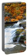 Autumn Falls Portable Battery Charger