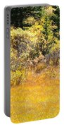 Autumn Fire In The Grass Portable Battery Charger