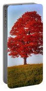 Autumn Flame Portable Battery Charger