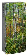 Autumn Forest Detail Portable Battery Charger