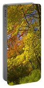 Autumn Forest Scene In West Michigan Portable Battery Charger