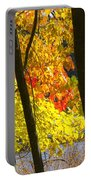 Autumn Forest Scene Portable Battery Charger