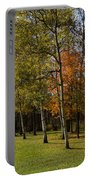 Autumn Forests And Fields Portable Battery Charger