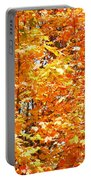 Autumn Fury Portable Battery Charger