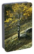 Autumn Glow - Yellowstone Portable Battery Charger