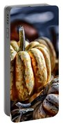 Autumn Glow Portable Battery Charger by Caitlyn  Grasso