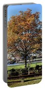 Autumn Gold Portable Battery Charger
