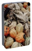 Autumn Gourds 2 Portable Battery Charger