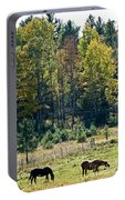 Autumn Grazing Portable Battery Charger