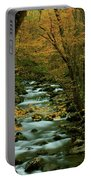 Autumn Greenbriar Cascade Portable Battery Charger