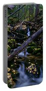 Autumn Greens Portable Battery Charger