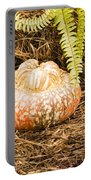 Autumn Harvest Portable Battery Charger
