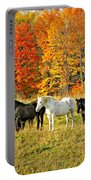 Autumn Herd Portable Battery Charger