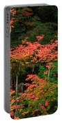 Autumn In Mount Rainier Forest Portable Battery Charger