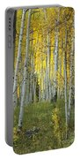 Autumn In The Aspen Grove Portable Battery Charger