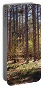 Autumn In The Pines Portable Battery Charger