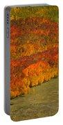 Autumn Lava Flow Portable Battery Charger