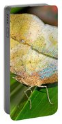 Autumn Leaf Butterfly Portable Battery Charger