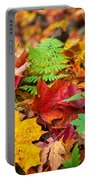 Autumn Leaf Salad Portable Battery Charger