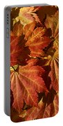 Autumn Leaves 00 Portable Battery Charger