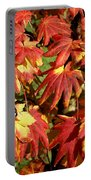 Autumn Leaves 07 Portable Battery Charger