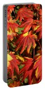 Autumn Leaves 08 Portable Battery Charger