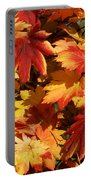 Autumn Leaves 09 Portable Battery Charger