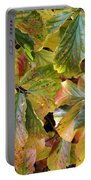 Autumn Leaves 79 Portable Battery Charger
