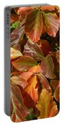 Autumn Leaves 81 Portable Battery Charger